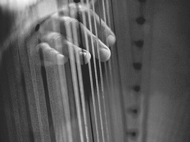 Harpist - Amanda 3